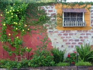 Image of a garden wall