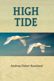 Front cover of High Tide